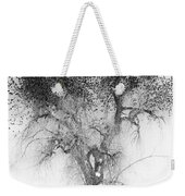 Bird Tree Land Bw Fine Art Print Weekender Tote Bag
