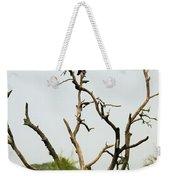 Bird011 Weekender Tote Bag