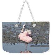 Birdie Ballet Weekender Tote Bag