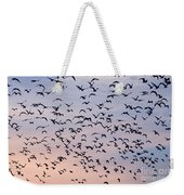 Birds A Flock Of Seagulls Weekender Tote Bag