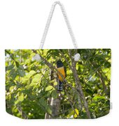 Birds Inside The Coba Ruins Weekender Tote Bag