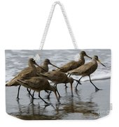 Birds Of A Feather 1 Weekender Tote Bag