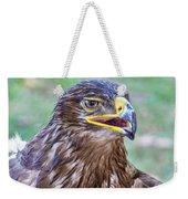 Birds Of Prey Series 3 Weekender Tote Bag