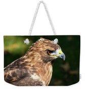 Birds Of Prey Series 5 Weekender Tote Bag