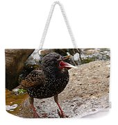 Birdsong Weekender Tote Bag