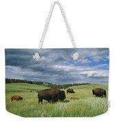 Bison And Their Calves Graze In Custer Weekender Tote Bag