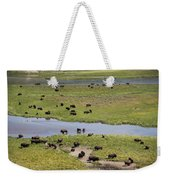 Bison Herd And Yellowstone River Weekender Tote Bag