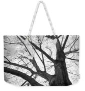 Black And White Autumn Tree  Weekender Tote Bag