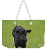 Black And White Calf Standing In A Field Weekender Tote Bag