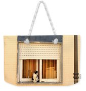 Black And White Cat On The Windowsill Weekender Tote Bag