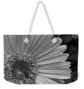 Black And White Gerber Daisy 5 Weekender Tote Bag