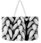 Black And White Hanging Plant Detail. Weekender Tote Bag