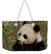 Black And White Panda Bear Eating Green Bamboo Shoots Weekender Tote Bag