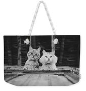 Black And White Portrait Of Two Aadorable And Curious Cats Looking Down Through The Window Weekender Tote Bag