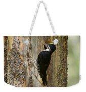 Black-backed Woodpecker Weekender Tote Bag