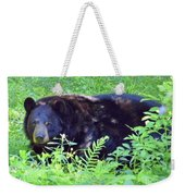 A Florida Black Bear Weekender Tote Bag