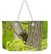 Black Bear Pictures 82 Weekender Tote Bag