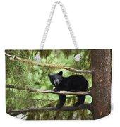 Black Bear Ursus Americanus Cub In Tree Weekender Tote Bag