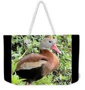 Black Bellied Whistling Duck Weekender Tote Bag