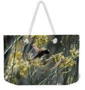 Black Chinned Hummingbird In Flight Weekender Tote Bag