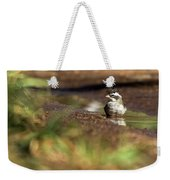 Black-crested Finch Weekender Tote Bag
