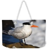 Black Crested Gull Weekender Tote Bag