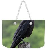 Black Crow Pearched On A Post Weekender Tote Bag