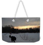 Black Dog Exploring Snow At Dawn Weekender Tote Bag
