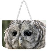 Black Eye Owl Weekender Tote Bag