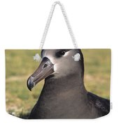 Black Footed Albatross Weekender Tote Bag