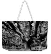 Black Forest Weekender Tote Bag by David Lee Thompson