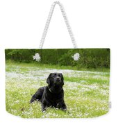 Black Lab Laying In A Field Weekender Tote Bag