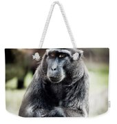 Black Macaque Monkey Sitting Weekender Tote Bag