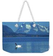 Black Necked Swan On Last Hope Sound Chile Weekender Tote Bag