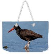 Black Oystercatcher Stroll Weekender Tote Bag