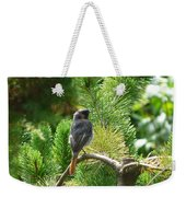 Black Redstart Weekender Tote Bag