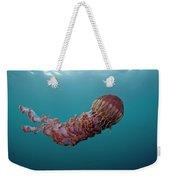 Black Sea Nettle Chrysaora Achlyos Weekender Tote Bag