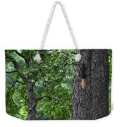 Black Squirrel With Blond Tail  Weekender Tote Bag