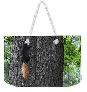 Black Squirrel With Blond Tail Two  Weekender Tote Bag