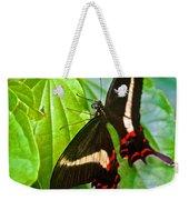 Black Swallowtail Butterfly In Iguazu Falls National Park-brazil  Weekender Tote Bag