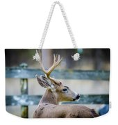 Black-tailed Buck Weekender Tote Bag
