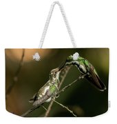 Black-throated Mango With Her Baby Hummingbird. Weekender Tote Bag