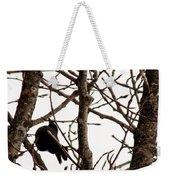 Blackbird In A Tree Weekender Tote Bag