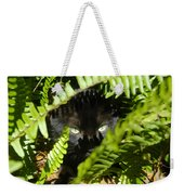 Blackie In The Ferns Weekender Tote Bag