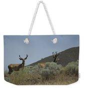 Blacktail Deer 2 Weekender Tote Bag
