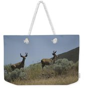 Blacktail Deer 3 Weekender Tote Bag