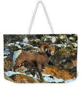 Blending In In Jasper Weekender Tote Bag