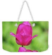 Blooming Dark Pink Tulip Flower Blossom In A Garden Weekender Tote Bag