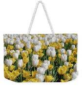 Blooming Tulips As Far As The Eye Can See Weekender Tote Bag