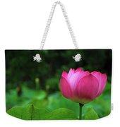 Blossoming Lotus Flower Closeuop Weekender Tote Bag